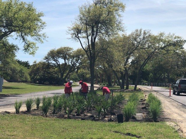 Landscaping begins along DeBordieu Blvd. – April 22, 2019