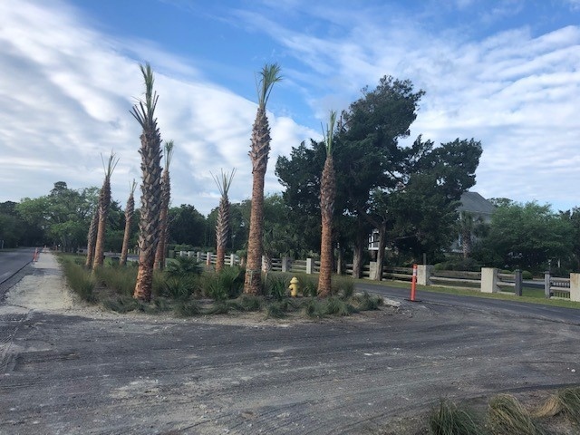 DeBordieu Boulevard Pedestrian Path Update – April 26, 2019